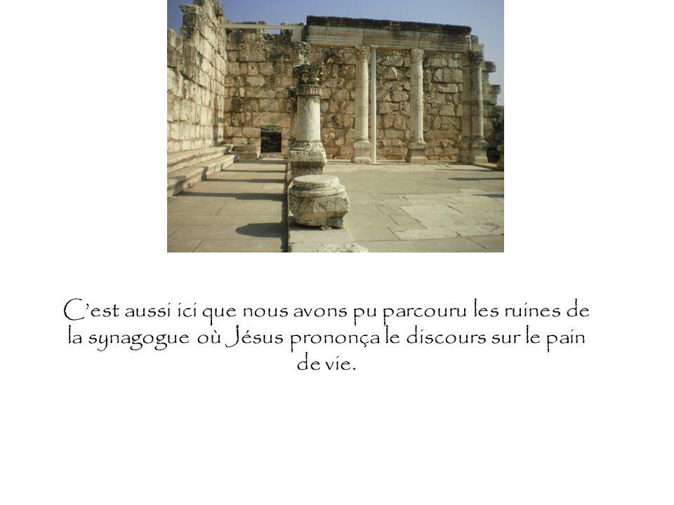 Cest aussi ici que nous avons pu parcouru les ruines de la synagogue où Jésus prononça le discours sur le pain de vie.