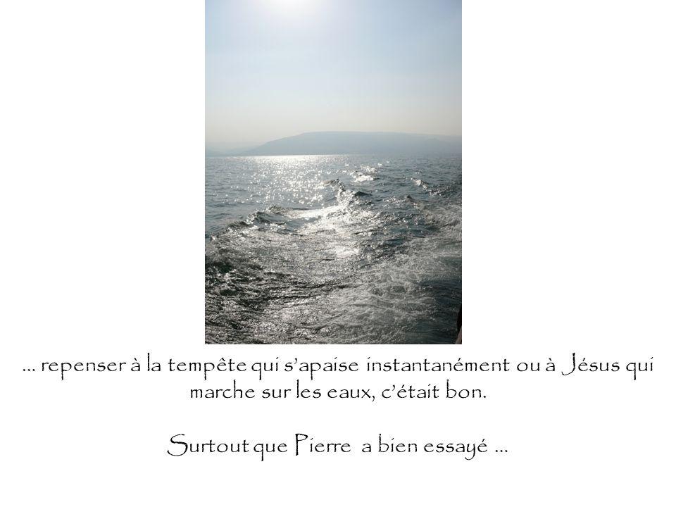… repenser à la tempête qui sapaise instantanément ou à Jésus qui marche sur les eaux, cétait bon. Surtout que Pierre a bien essayé …
