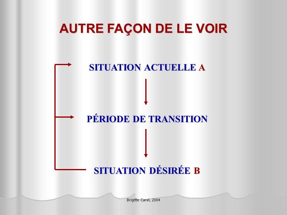 Brigitte Carel, 2004 AUTRE FAÇON DE LE VOIR SITUATION ACTUELLE A PÉRIODE DE TRANSITION SITUATION DÉSIRÉE B