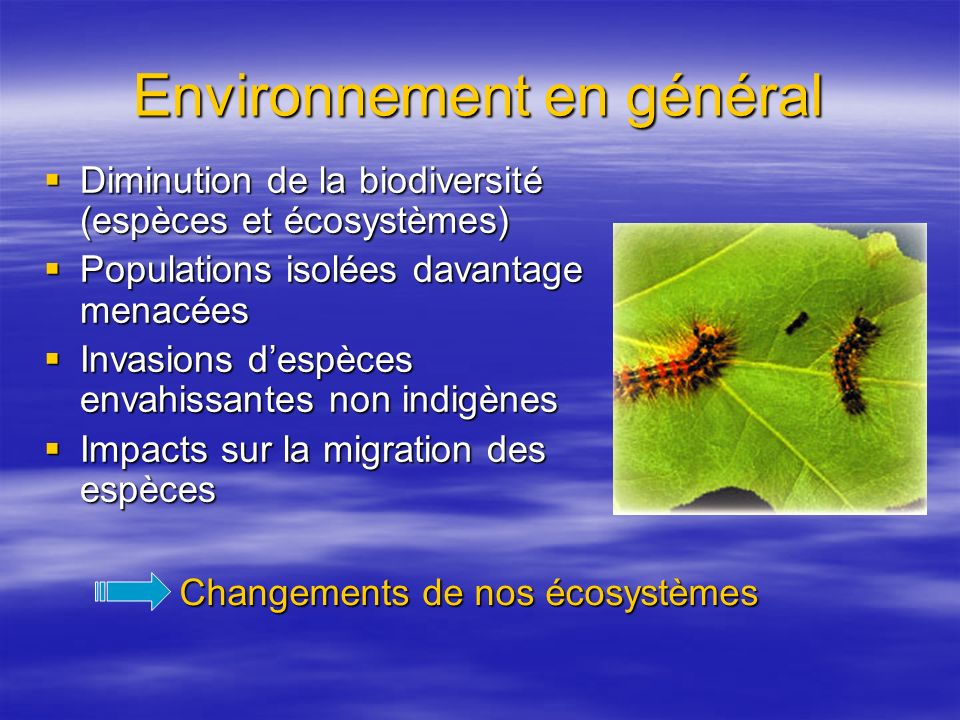 Environnement en général Diminution de la biodiversité (espèces et écosystèmes) Diminution de la biodiversité (espèces et écosystèmes) Populations isolées davantage menacées Populations isolées davantage menacées Invasions despèces envahissantes non indigènes Invasions despèces envahissantes non indigènes Impacts sur la migration des espèces Impacts sur la migration des espèces Changements de nos écosystèmes