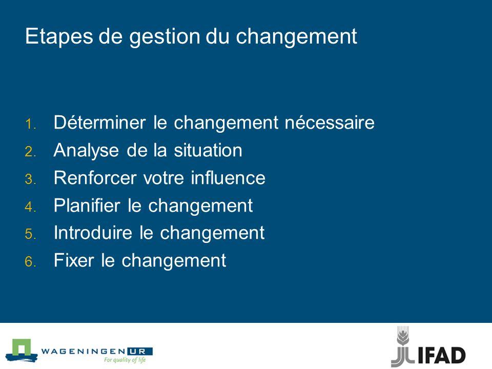 Etapes de gestion du changement Déterminer le changement nécessaire Analyse de la situation Renforcer votre influence Planifier le changement Introduire le changement Fixer le changement
