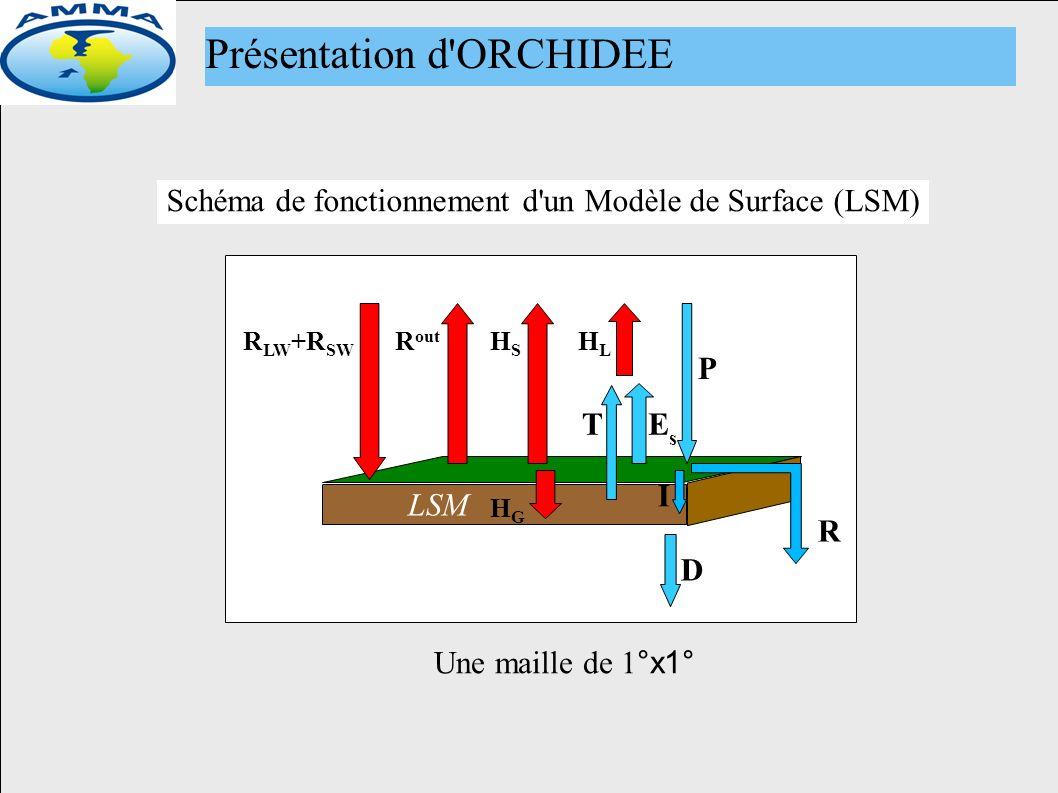 LSM P R I D T EsEs HLHL HSHS HGHG R out R LW +R SW Schéma de fonctionnement d un Modèle de Surface (LSM) Présentation d ORCHIDEE Une maille de 1 °x1°