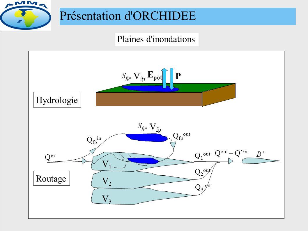 Nouveau module de routage (fp et mares) P B Q in Q 1 out Q out = Q in Routage Hydrologie V1V1 Q fp in S fp, V fp Q fp out E pot V2V2 V3V3 S fp, V fp Plaines d inondations Présentation d ORCHIDEE Q 2 out Q 3 out