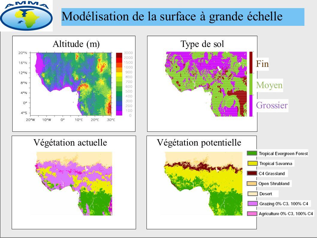 Altitude (m)Type de sol Fin Moyen Grossier Végétation potentielleVégétation actuelle Modélisation de la surface à grande échelle