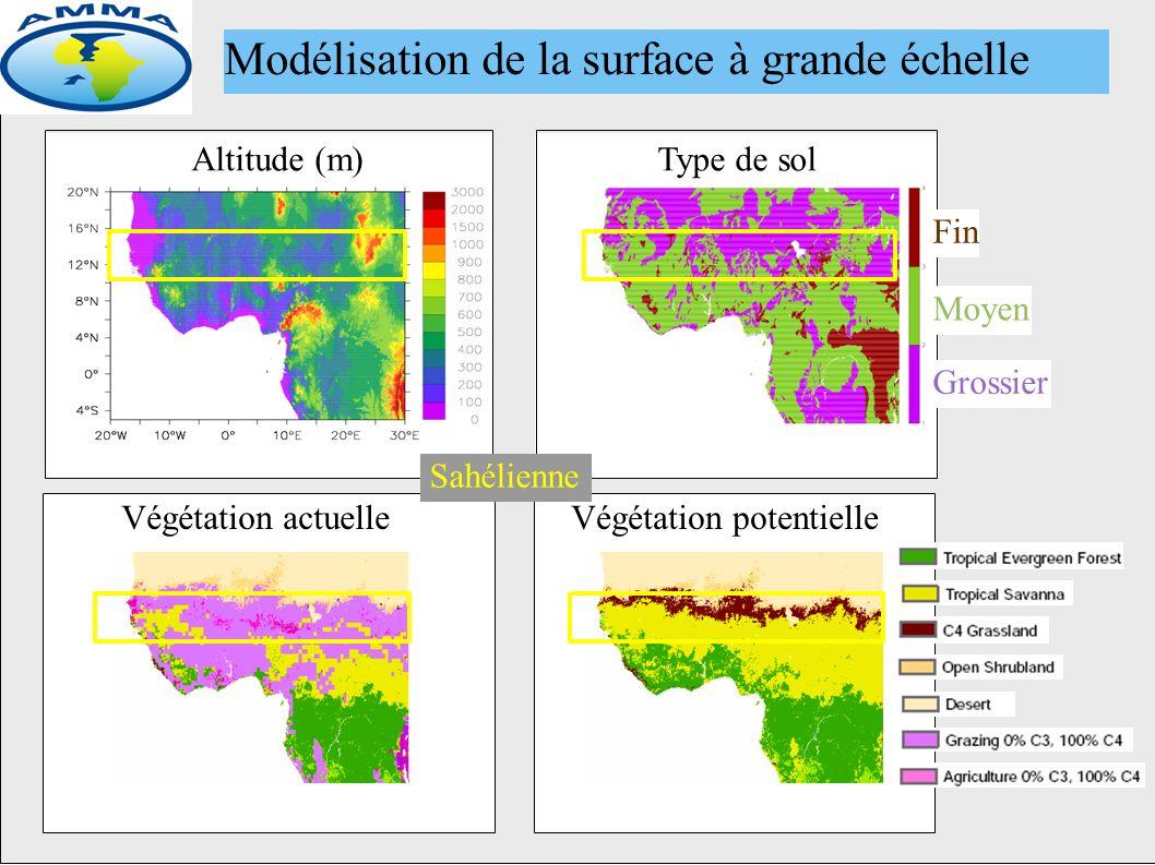 Altitude (m)Type de sol Fin Moyen Grossier Végétation potentielleVégétation actuelle Modélisation de la surface à grande échelle Sahélienne
