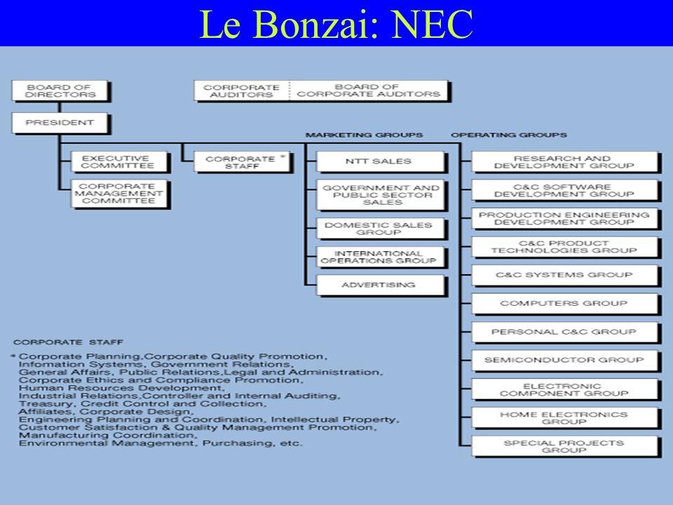 50 Le Bonzai: NEC
