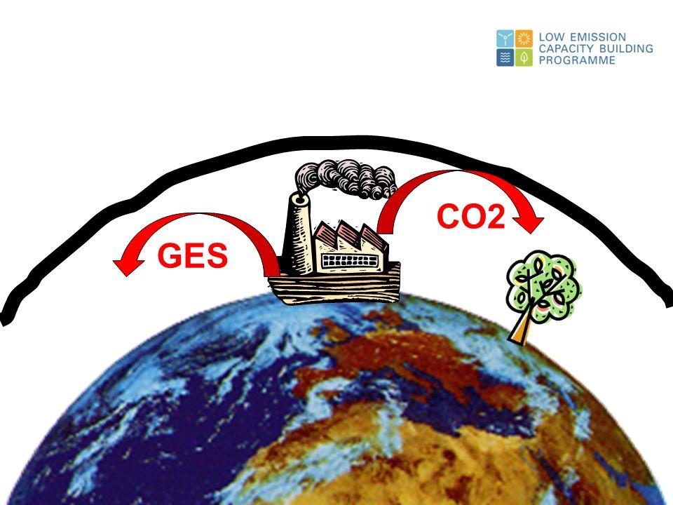 18% 1% 8% 14% 59% Distribution des émissions mondiales de Gaz à Effet de Serre CH 4 N2ON2O F Gas CO 2 Issu de la Combustion CO 2 Sol & Forêts
