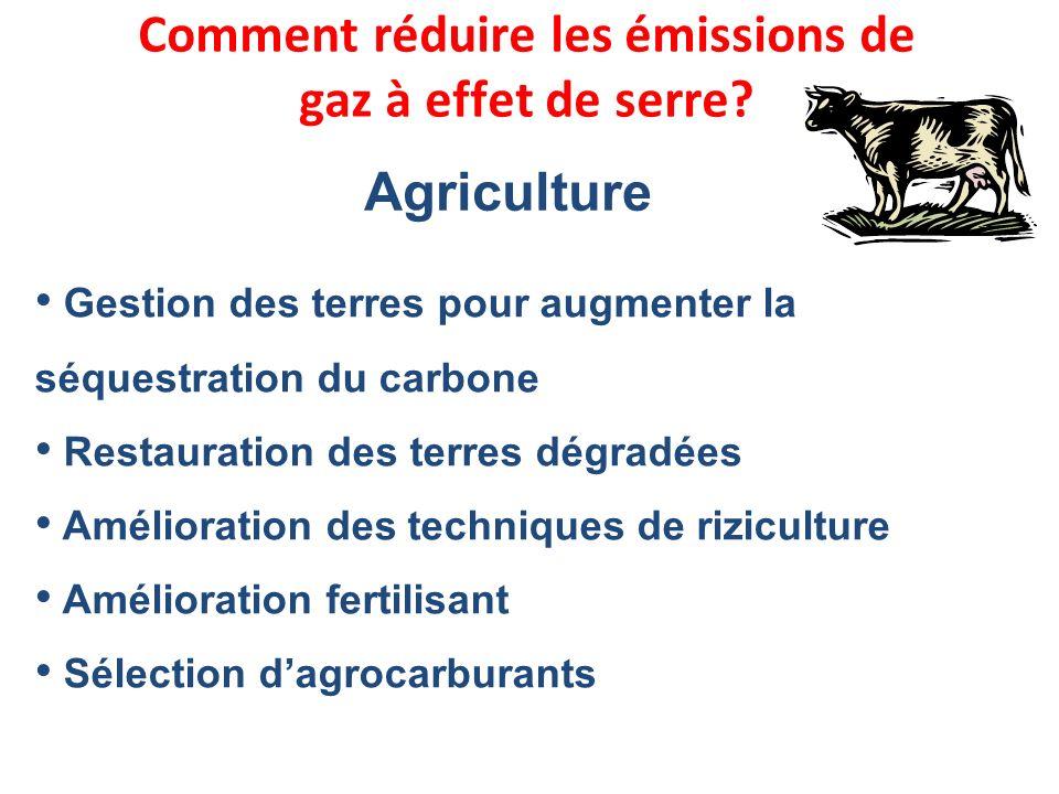Gestion des terres pour augmenter la séquestration du carbone Restauration des terres dégradées Amélioration des techniques de riziculture Amélioratio