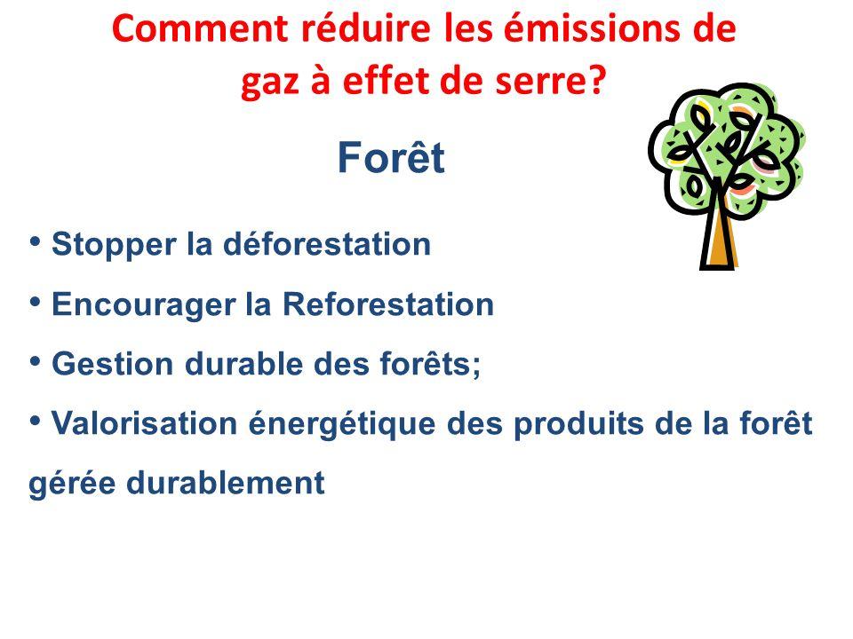 Stopper la déforestation Encourager la Reforestation Gestion durable des forêts; Valorisation énergétique des produits de la forêt gérée durablement F