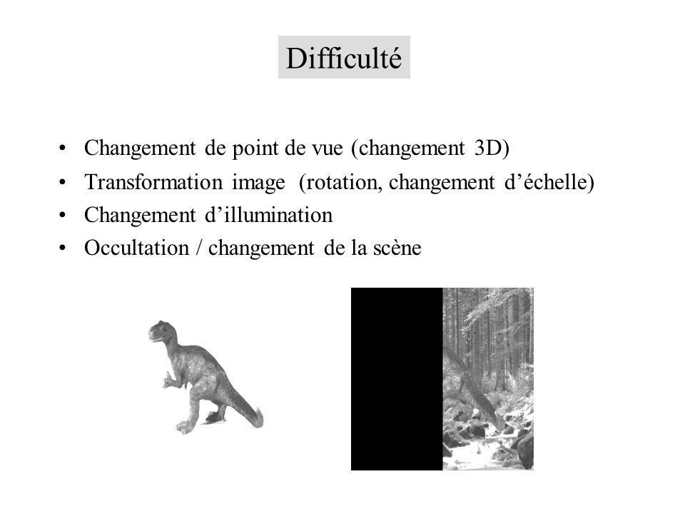Changement de point de vue (changement 3D) Transformation image (rotation, changement déchelle) Changement dillumination Occultation / changement de la scène Difficulté