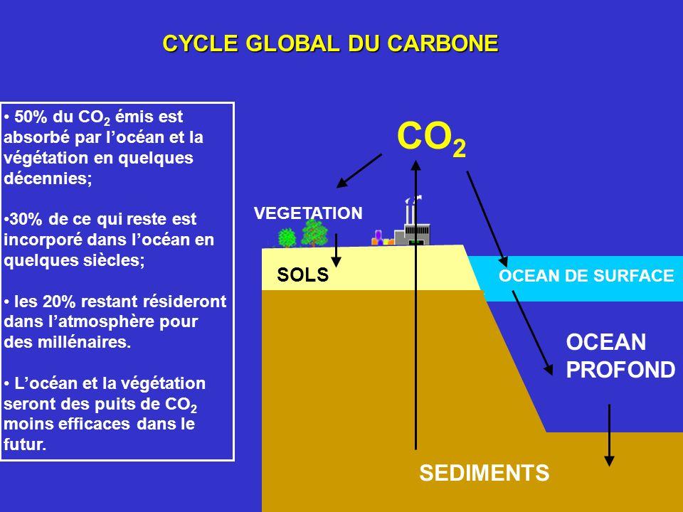 CYCLE GLOBAL DU CARBONE SOLS VEGETATION SEDIMENTS OCEAN PROFOND OCEAN DE SURFACE CO 2 50% du CO 2 émis est absorbé par locéan et la végétation en quel
