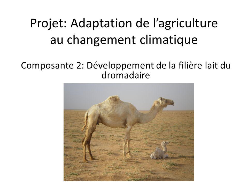 Projet: Adaptation de lagriculture au changement climatique Composante 2: Développement de la filière lait du dromadaire