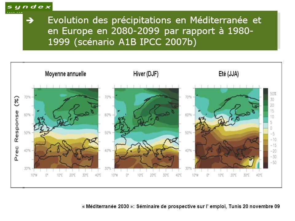 « Méditerranée 2030 »: Séminaire de prospective sur l emploi, Tunis 20 novembre 09 12 Evolution des précipitations en Méditerranée et en Europe en 208