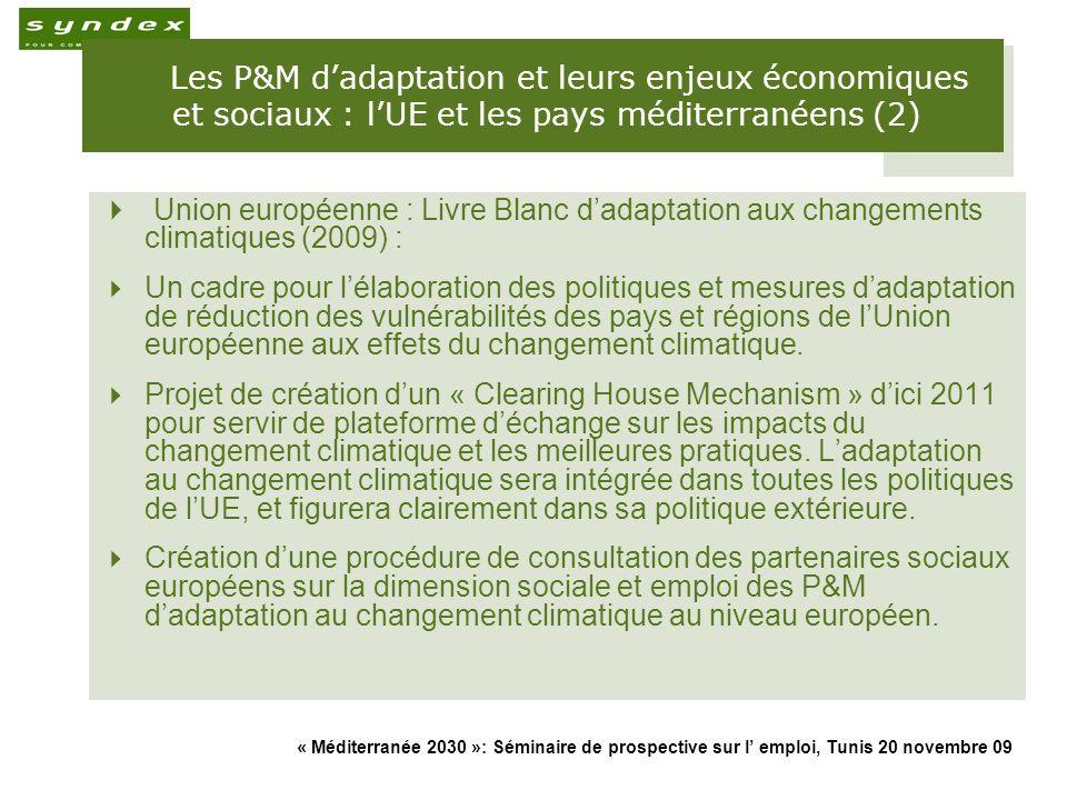 « Méditerranée 2030 »: Séminaire de prospective sur l emploi, Tunis 20 novembre 09 17 Les P&M dadaptation et leurs enjeux économiques et sociaux : lUE