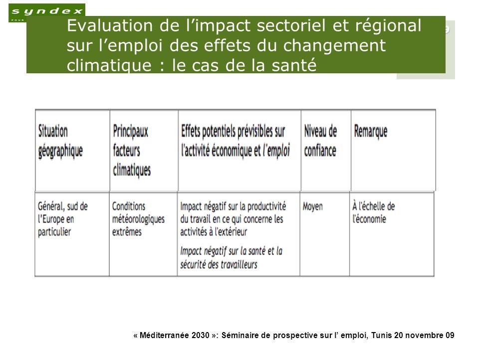 « Méditerranée 2030 »: Séminaire de prospective sur l emploi, Tunis 20 novembre 09 20 Les P&M de réduction des émissions de CO2 induisent une redistribution des emplois intra- et inter-sectoriels et une gestion participative de la transition sociale (1) Les mesures permettant à lUnion européenne de réduire ses émissions de CO2 denviron 40% en 2030 ne détruisent globalement pas demplois (+1,5%), mais induisent des modifications substantielles de loffre et de la demande demplois et de qualifications au sein et entre les secteurs.