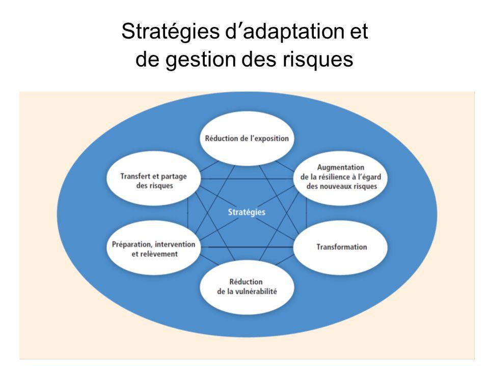 Stratégies dadaptation et de gestion des risques