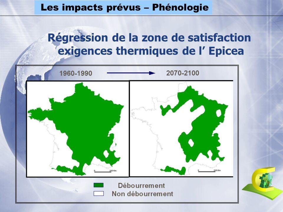 Régression de la zone de satisfaction exigences thermiques de l Epicea Les impacts prévus – Phénologie