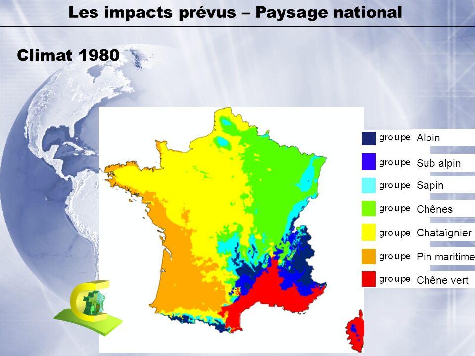 Chêne vert Alpin Sub alpin Sapin Chênes Chataîgnier Pin maritime Les impacts prévus – Paysage national Climat 1980