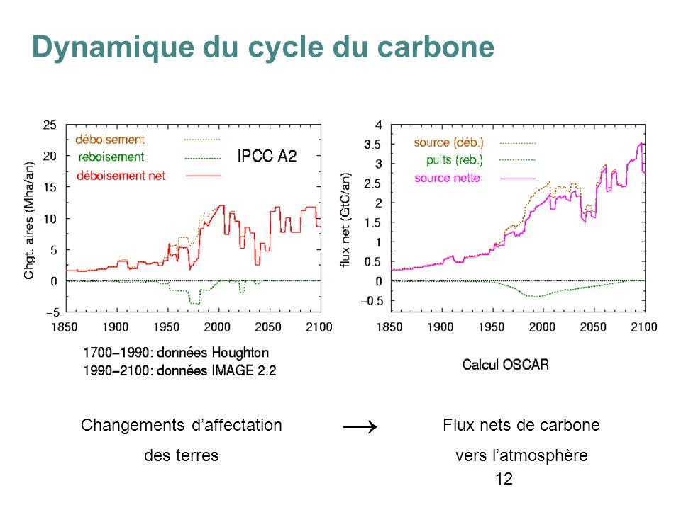 12 Changements daffectation des terres Flux nets de carbone vers latmosphère Dynamique du cycle du carbone