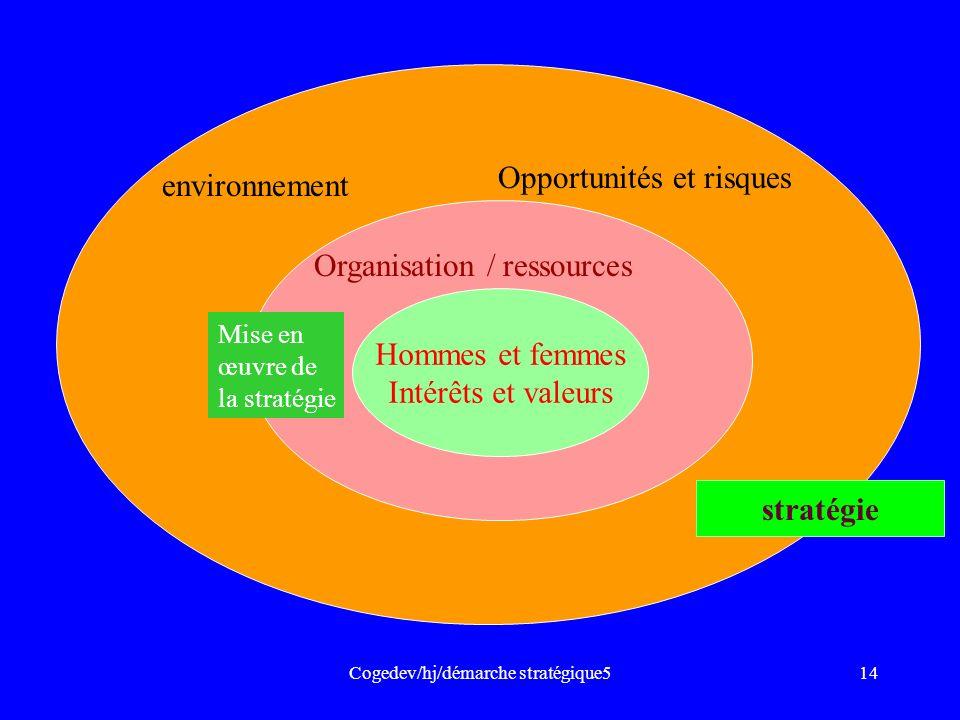 Cogedev/hj/démarche stratégique514 environnement Opportunités et risques stratégie Organisation / ressources Hommes et femmes Intérêts et valeurs Mise