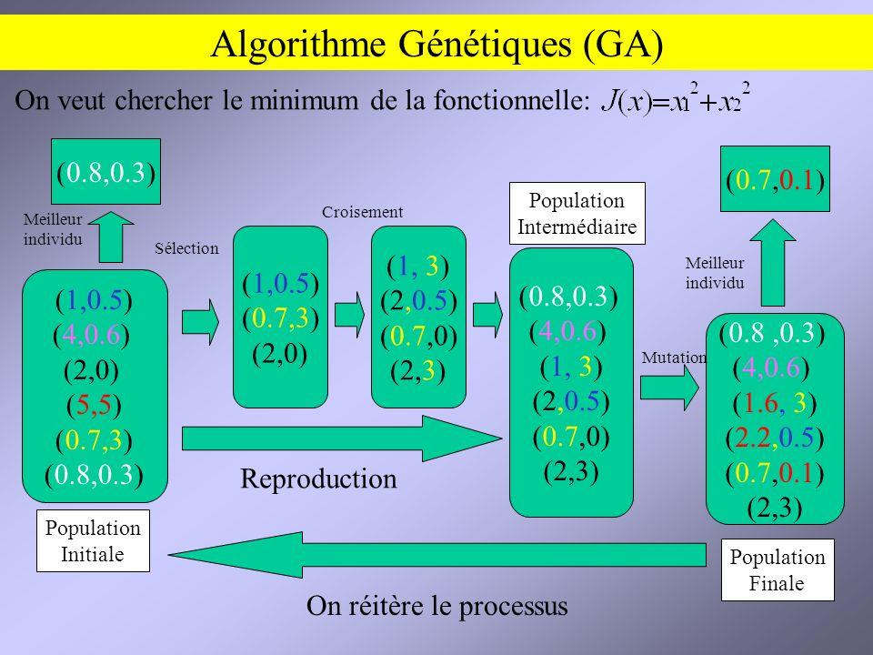 Algorithme Génétiques (GA) (1,0.5) (4,0.6) (2,0) (5,5) (0.7,3) (0.8,0.3) (1,0.5) (0.7,3) (2,0) (0.8,0.3) (4,0.6) (1, 3) (2,0.5) (0.7,0) (2,3) (0.8,0.3) (4,0.6) (1.6, 3) (2.2,0.5) (0.7,0.1) (2,3) (0.7,0.1) (1, 3) (2,0.5) (0.7,0) (2,3) Reproduction Mutation Croisement Sélection On réitère le processus Meilleur individu On veut chercher le minimum de la fonctionnelle: Population Initiale Population Finale (0.8,0.3) Meilleur individu Population Intermédiaire
