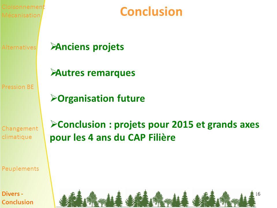 16 Conclusion Anciens projets Autres remarques Organisation future Conclusion : projets pour 2015 et grands axes pour les 4 ans du CAP Filière Cloisonnement Mécanisation Alternatives Pression BE Changement climatique Peuplements Divers - Conclusion
