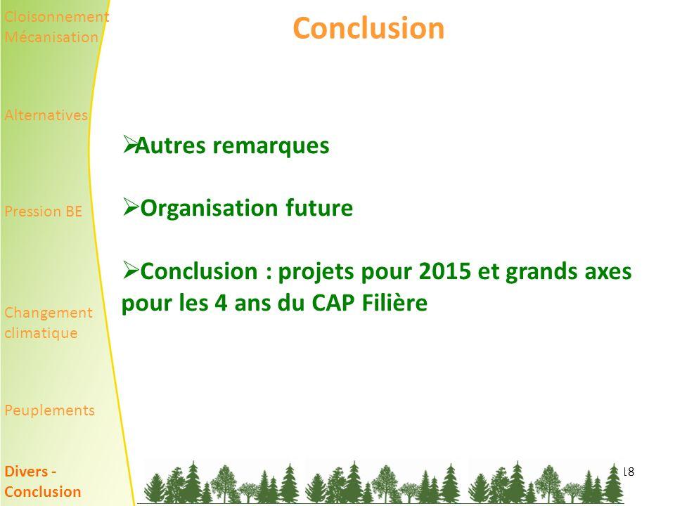 18 Conclusion Autres remarques Organisation future Conclusion : projets pour 2015 et grands axes pour les 4 ans du CAP Filière Cloisonnement Mécanisation Alternatives Pression BE Changement climatique Peuplements Divers - Conclusion