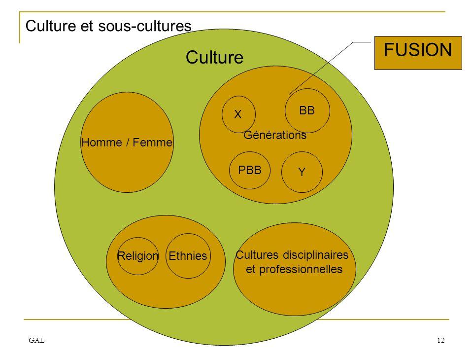 GAL APEC 2007 12 Culture et sous-cultures Homme / Femme Culture Générations X Y BB Religion Ethnies FUSION PBB Cultures disciplinaires et professionne