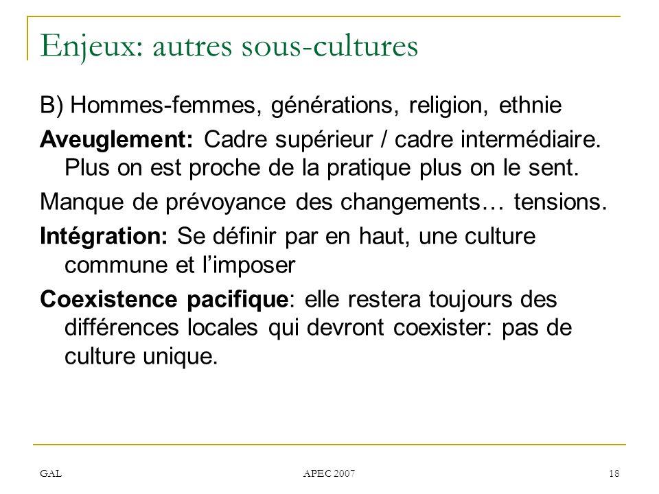 GAL APEC 2007 18 Enjeux: autres sous-cultures B) Hommes-femmes, générations, religion, ethnie Aveuglement: Cadre supérieur / cadre intermédiaire. Plus