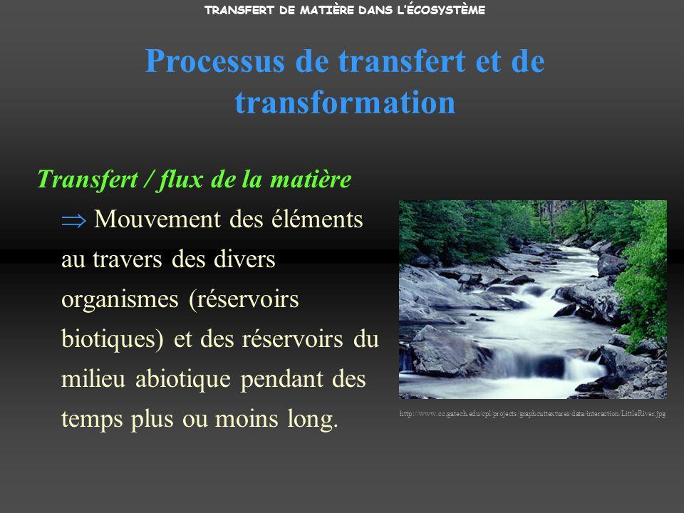 Processus de transfert et de transformation Transfert / flux de la matière Mouvement des éléments au travers des divers organismes (réservoirs biotiques) et des réservoirs du milieu abiotique pendant des temps plus ou moins long.
