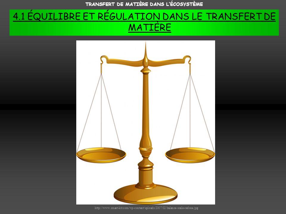 TRANSFERT DE MATIÈRE DANS LÉCOSYSTÈME 4.1 ÉQUILIBRE ET RÉGULATION DANS LE TRANSFERT DE MATIÈRE http://www.smart-kit.com/wp-content/uploads/2007/02/balance-scale-redone.jpg