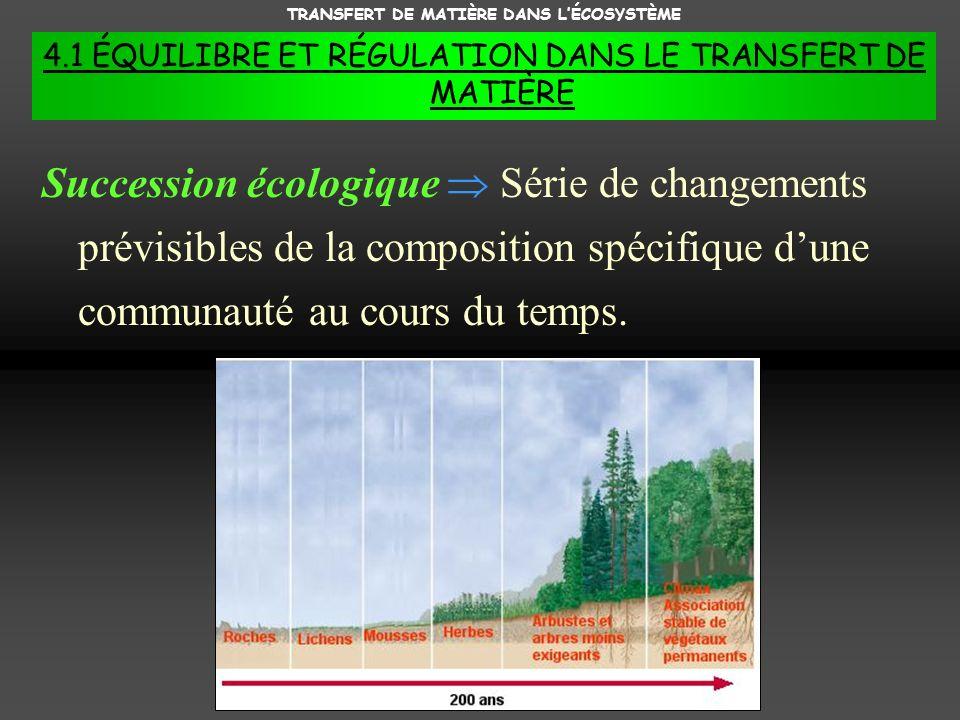 TRANSFERT DE MATIÈRE DANS LÉCOSYSTÈME 4.1 ÉQUILIBRE ET RÉGULATION DANS LE TRANSFERT DE MATIÈRE Succession écologique Série de changements prévisibles de la composition spécifique dune communauté au cours du temps.