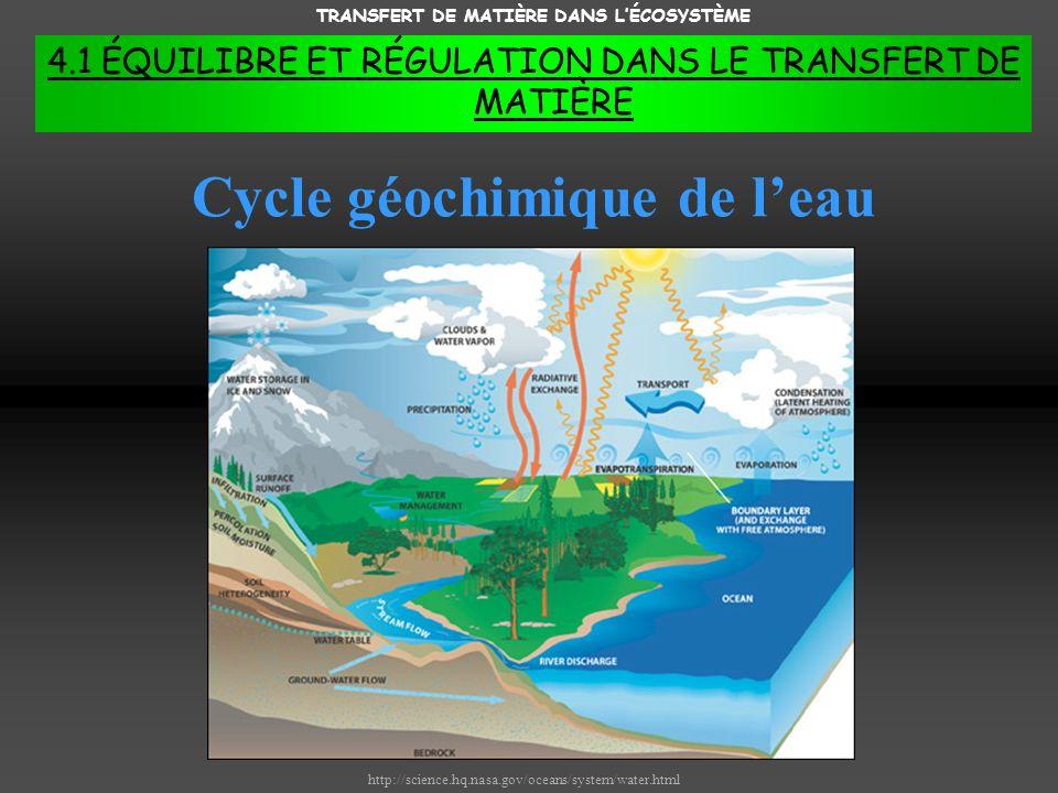 TRANSFERT DE MATIÈRE DANS LÉCOSYSTÈME 4.1 ÉQUILIBRE ET RÉGULATION DANS LE TRANSFERT DE MATIÈRE http://science.hq.nasa.gov/oceans/system/water.html Cycle géochimique de leau