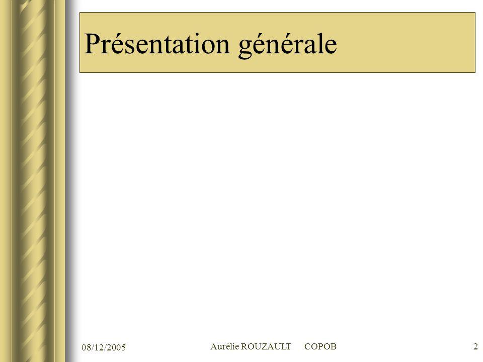 08/12/2005 Aurélie ROUZAULT COPOB2 Présentation générale