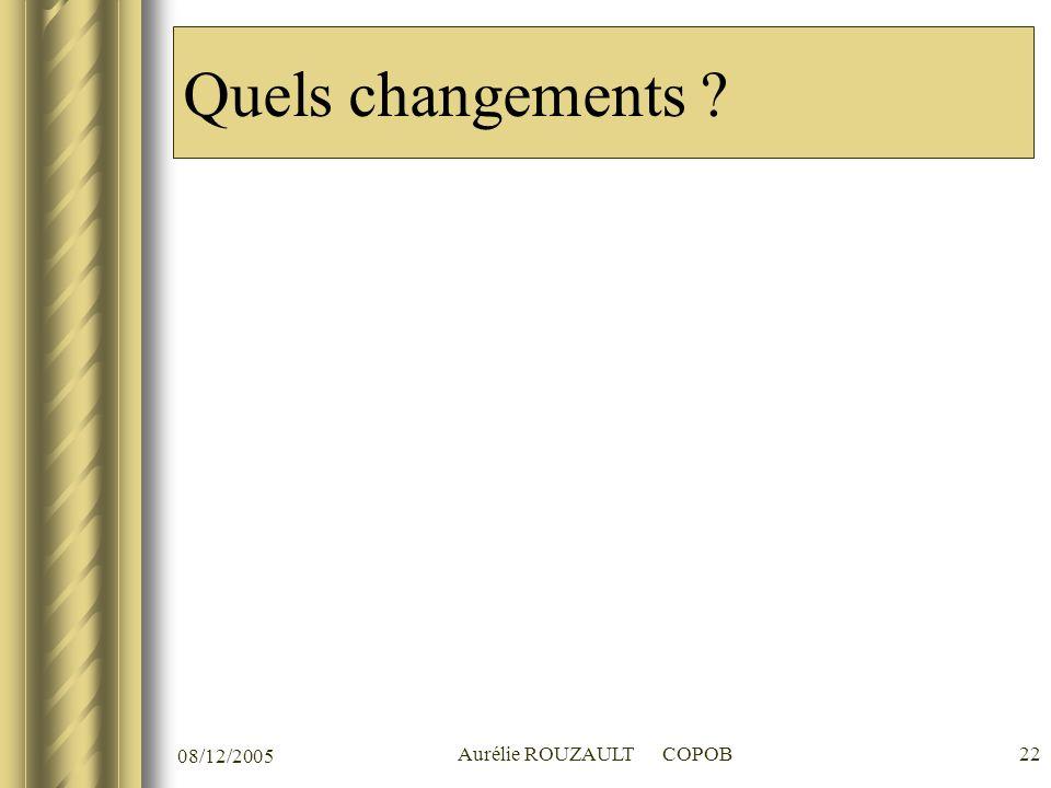 08/12/2005 Aurélie ROUZAULT COPOB22 Quels changements ?