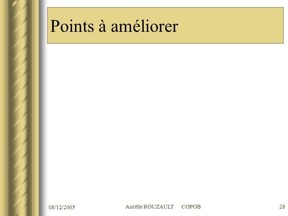 08/12/2005 Aurélie ROUZAULT COPOB28 Points à améliorer