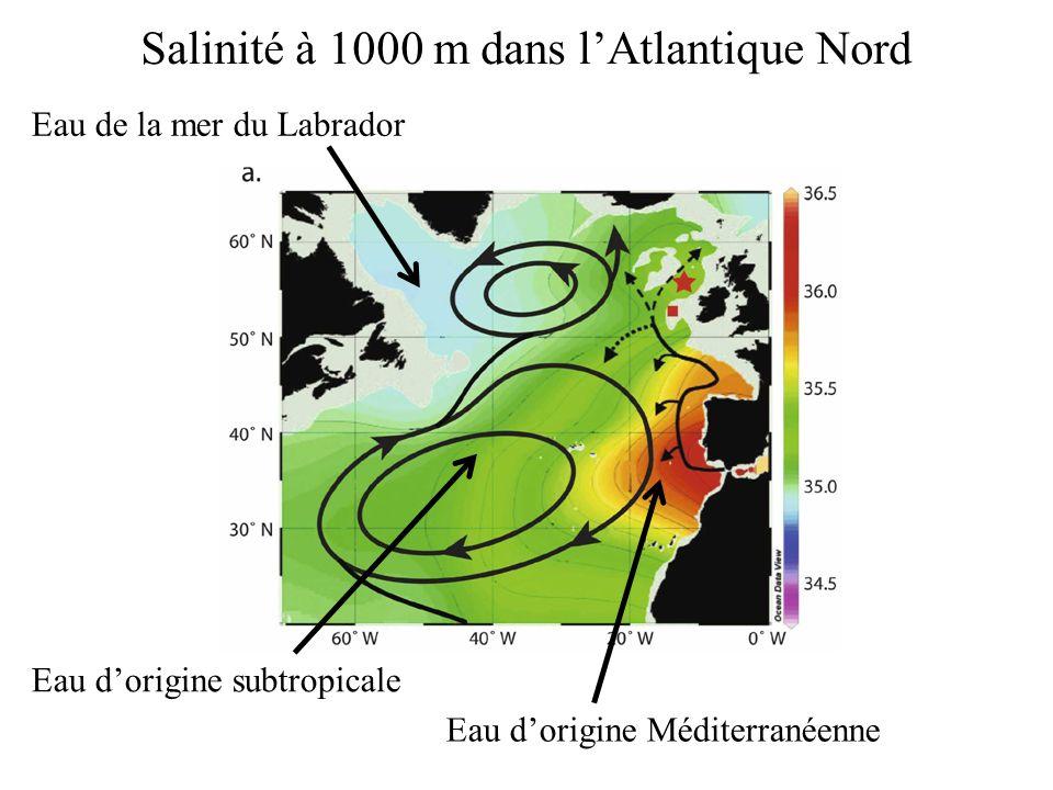 Salinité à 1000 m dans lAtlantique Nord Eau de la mer du Labrador Eau dorigine Méditerranéenne Eau dorigine subtropicale