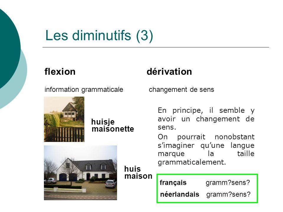 Les diminutifs (3) flexiondérivation information grammaticalechangement de sens huisje huis maisonette maison En principe, il semble y avoir un changement de sens.