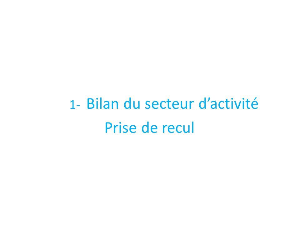 1- Bilan du secteur dactivité Prise de recul