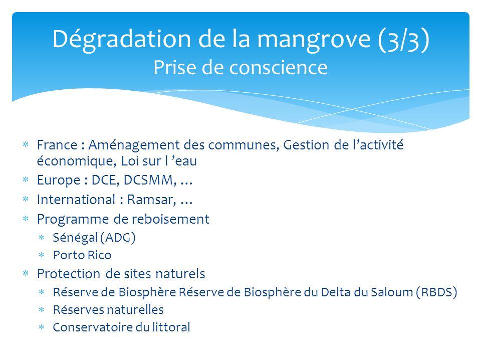 France : Aménagement des communes, Gestion de lactivité économique, Loi sur l eau Europe : DCE, DCSMM, … International : Ramsar, … Programme de rebois