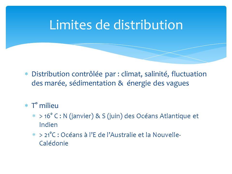 Distribution contrôlée par : climat, salinité, fluctuation des marée, sédimentation & énergie des vagues T° milieu > 16° C : N (janvier) & S (juin) de