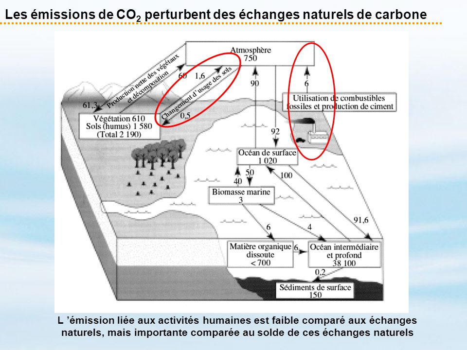 Les émissions de CO 2 perturbent des échanges naturels de carbone L émission liée aux activités humaines est faible comparé aux échanges naturels, mai