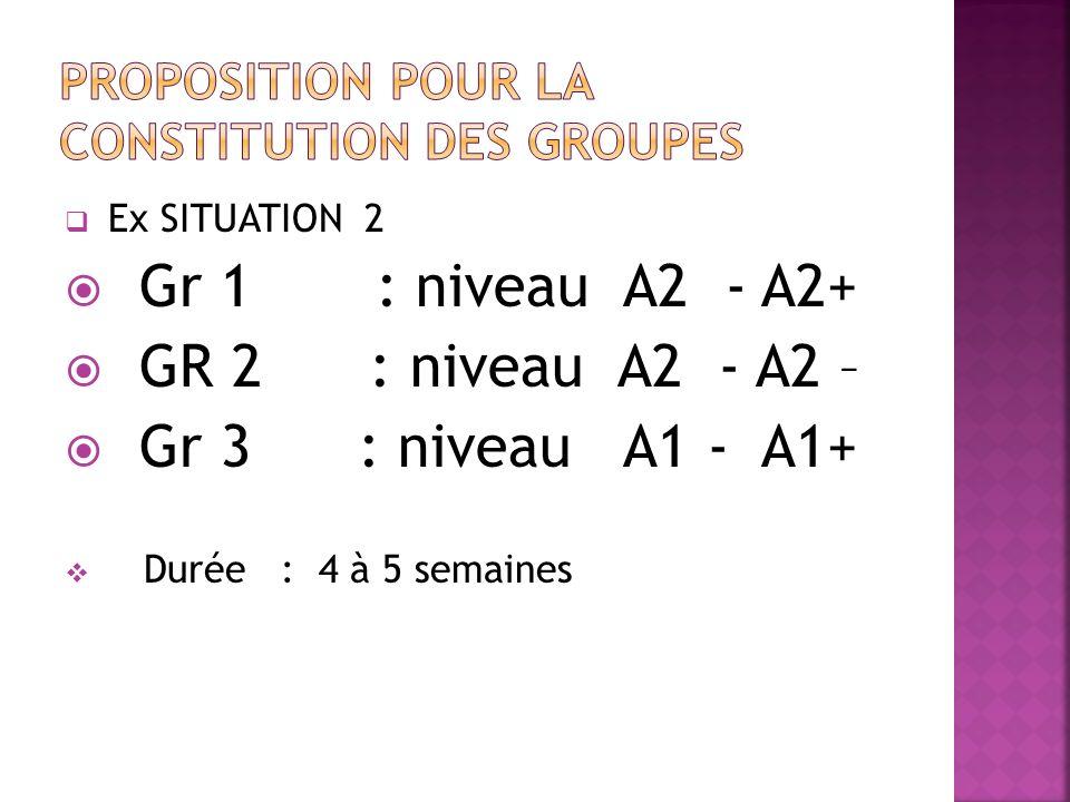 Ex SITUATION 2 Gr 1 : niveau A2 - A2+ GR 2 : niveau A2 - A2 – Gr 3 : niveau A1 - A1+ Durée : 4 à 5 semaines