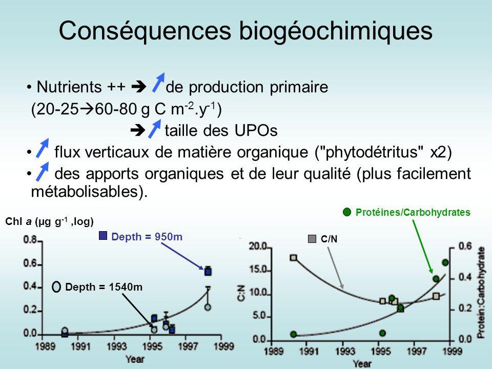 Conséquences biogéochimiques Nutrients ++ de production primaire (20-25 60-80 g C m -2.y -1 ) taille des UPOs flux verticaux de matière organique (