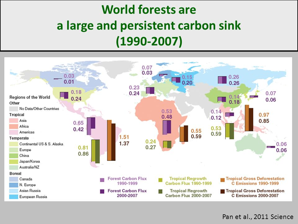 World forests are a large and persistent carbon sink (1990-2007) Pan et al., 2011 Science