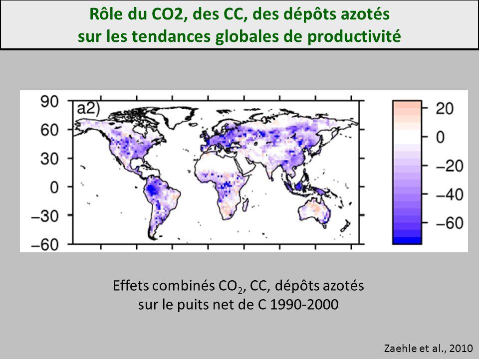 Rôle du CO2, des CC, des dépôts azotés sur les tendances globales de productivité Zaehle et al., 2010 Effets combinés CO 2, CC, dépôts azotés sur le puits net de C 1990-2000