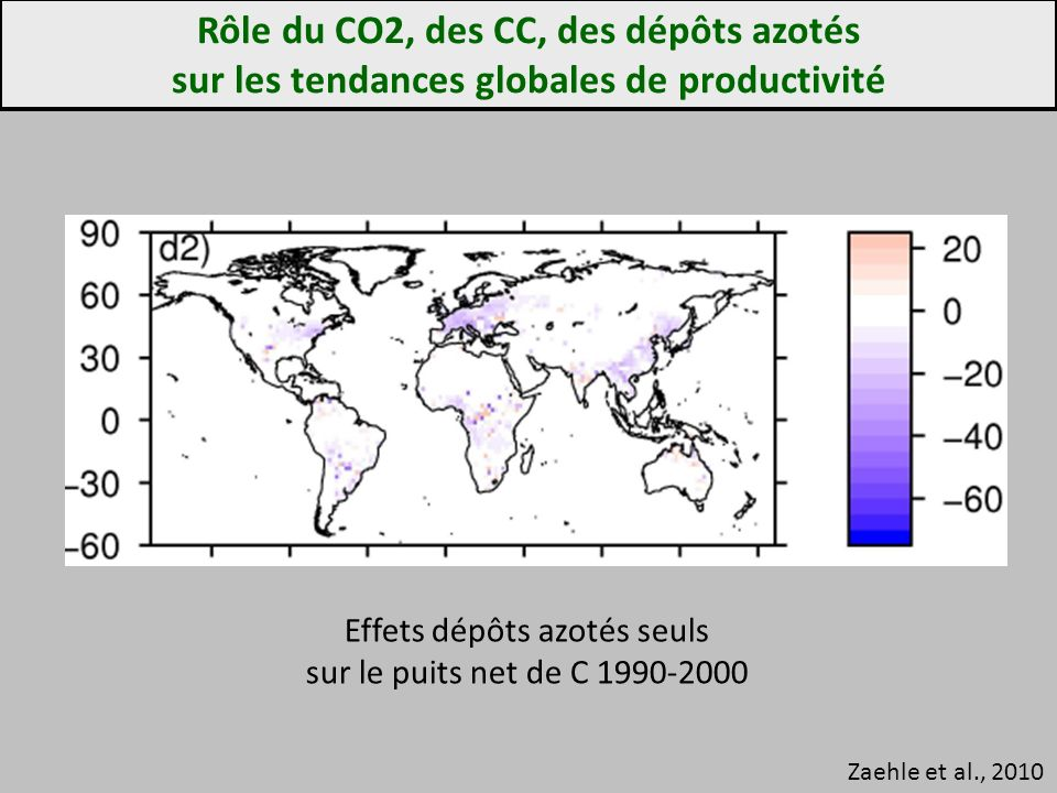 Rôle du CO2, des CC, des dépôts azotés sur les tendances globales de productivité Zaehle et al., 2010 Effets dépôts azotés seuls sur le puits net de C 1990-2000