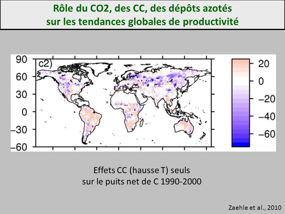 Rôle du CO2, des CC, des dépôts azotés sur les tendances globales de productivité Zaehle et al., 2010 Effets CC (hausse T) seuls sur le puits net de C 1990-2000