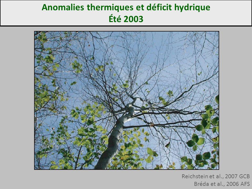 Reichstein et al., 2007 GCB Bréda et al., 2006 AFS Anomalies thermiques et déficit hydrique Été 2003