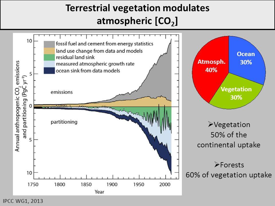 Impacts de la gestion forestière Ciais et al., 2008 Nature Geoscience 1960 1970 1980 1990 2000 Over 1960-2000 Wood production increased Wood harvest remained stable